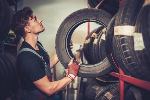 Professional Car Mechanic Choosing New Tire In PN5QEWT